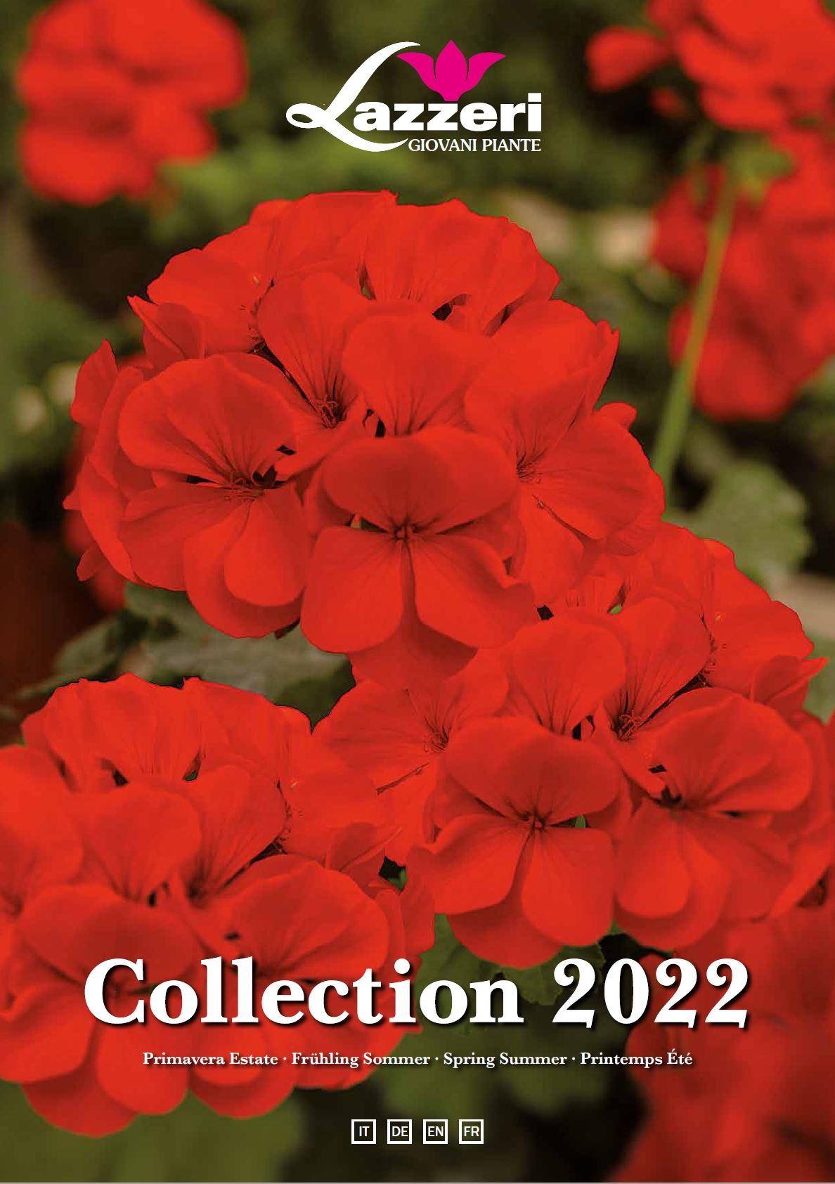 catalogo 2022.JPG